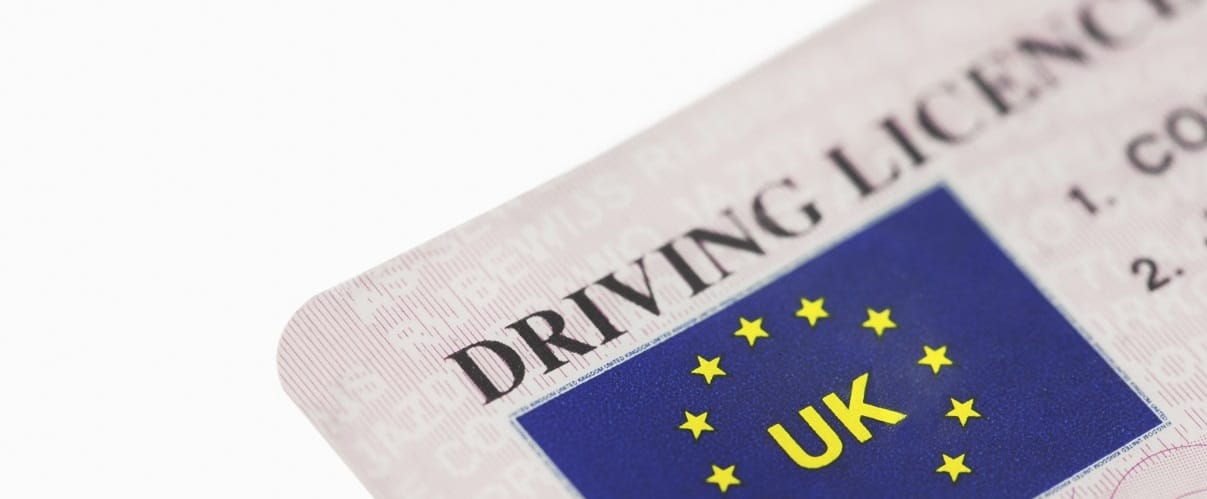state of michigan international drivers license