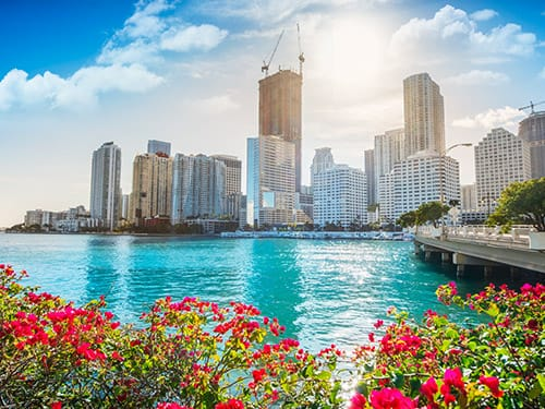 Miami driving adventures and car rental tips