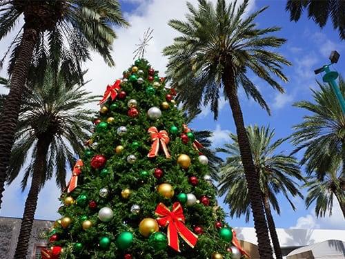 Exploring festive Florida at Christmas